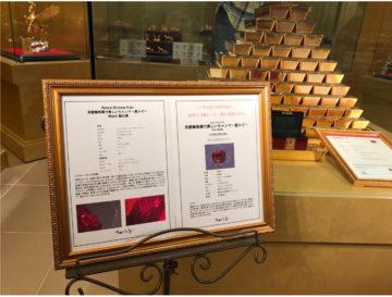 6.6億円のモリスルビーが展示されましたの画像
